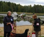 Orivesi all-breed puppy show: Raila was BIG-1! photo taken by Niina K�lvinm�ki