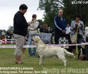 28.6.2009 Rusne all-breed show, Lithuania